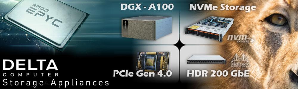 NVMe Flash Storage-Server