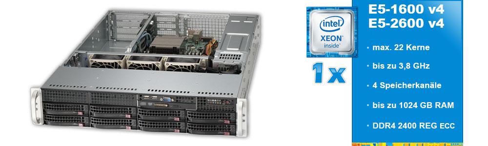 Intel Xeon E5-1600 / E5-2600 (1-Sockel)