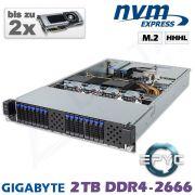 D12z-M2-ZN-2xGPU