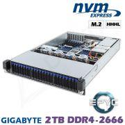 D12z-M2-ZN