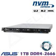 D13z-M1-ZN