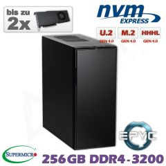 D10z-ULN-ZM-2xGPU