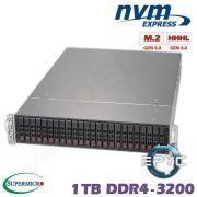 D10z-M2-ZR