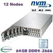 D10-12x-M3-CL