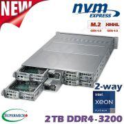 D20-4x-M2-WI
