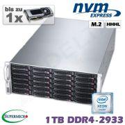 D10x-M4-W