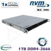 D10z-M1-ZN
