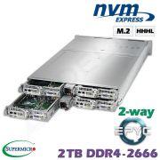 D20-4z-M2-ZN