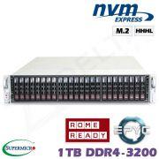 D10z-M2-ZN
