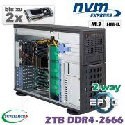 D20z-M4-ZN-2xGPU