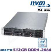 D12x-M2-W