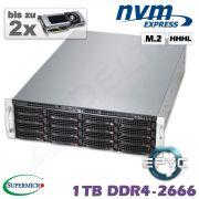 D10z-M3-ZN-2xGPU