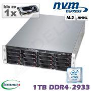 D10x-M3-W