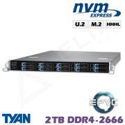 D11z-M1-ZN