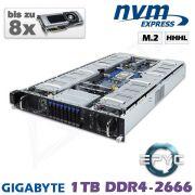 D12z-M2-ZN-8xGPU