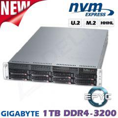 D12z-M2-ZR