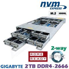 D22-4z-M2-ZN