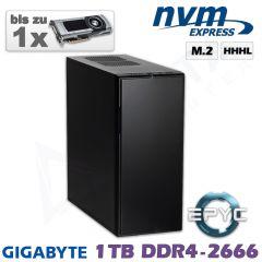 D12z-ULN-ZR